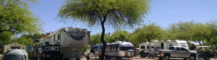 RV's Shade Trees
